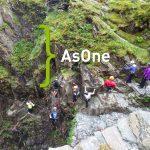 AsOne Design Team