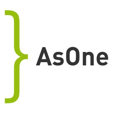 AsOne helping youth development